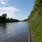 Neckar Ufer Heidelberg