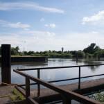 Neckar Ufer Windhof Unterer Neckar: Altneckar Blick